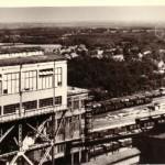 82-Hendrik 1950